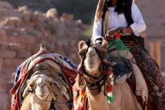 solveiga mikelsone, foto, ceļojumi, reportāža, ekskursija, kamielis, cilvēki, tradīcijas