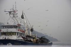 solveiga mikelsone, foto, ceļojumi, reportāžas, ekskursijas, kuģi